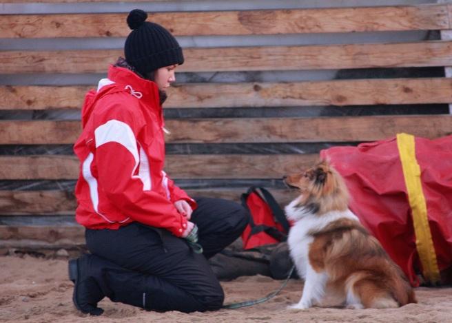 Hundkurs i Kvevlax (2)